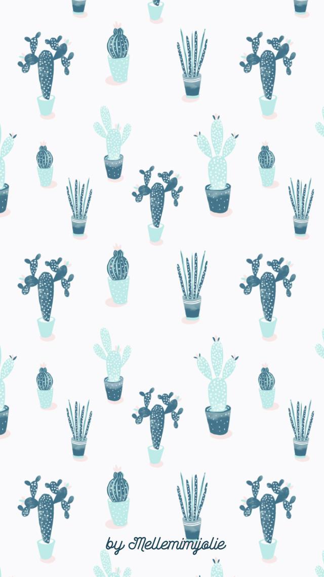cactus le fond d 39 cran mellemimijolie. Black Bedroom Furniture Sets. Home Design Ideas