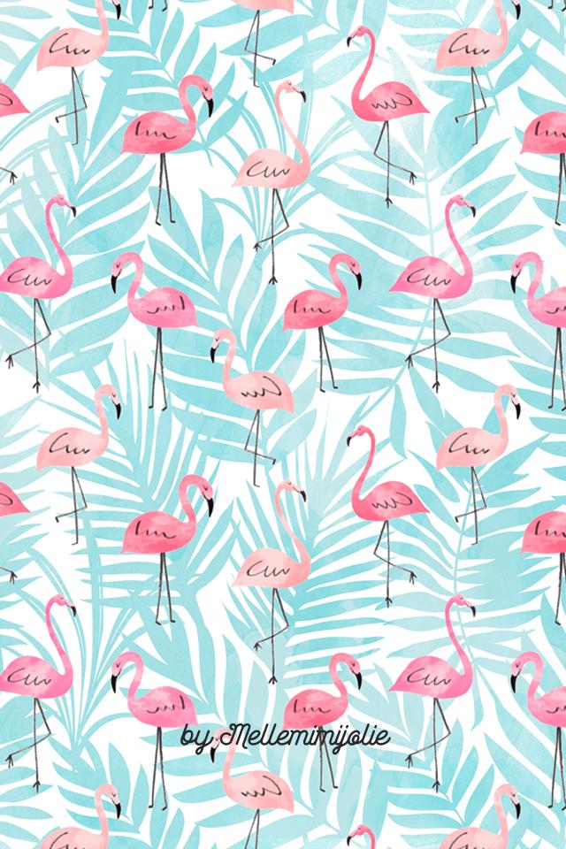 Flamingo Wallpaper Mellemimijolie