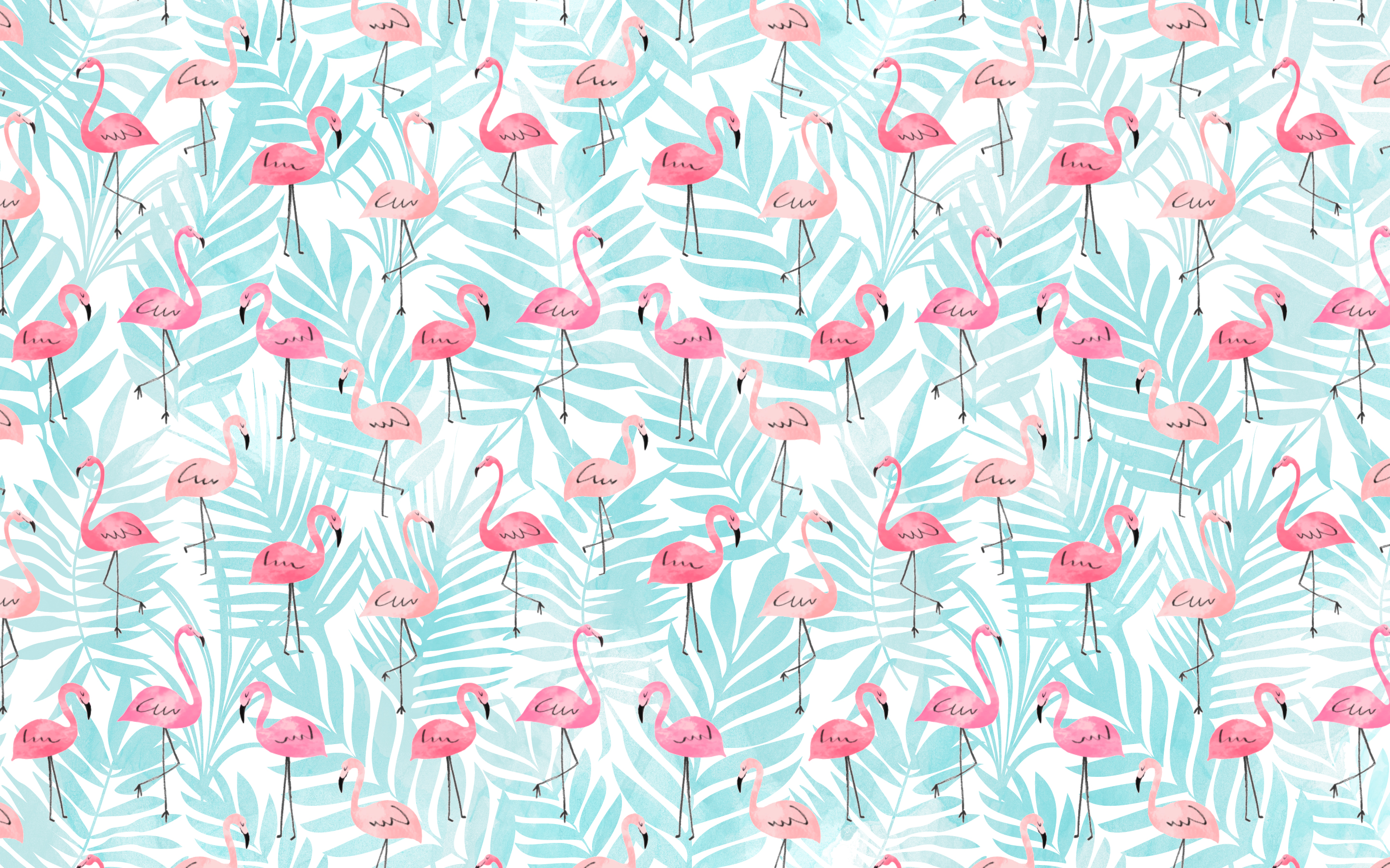 Flamingo wallpaper mellemimijolie for Image fond ecran ordinateur