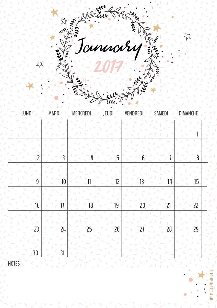 calendrier janvier 2017