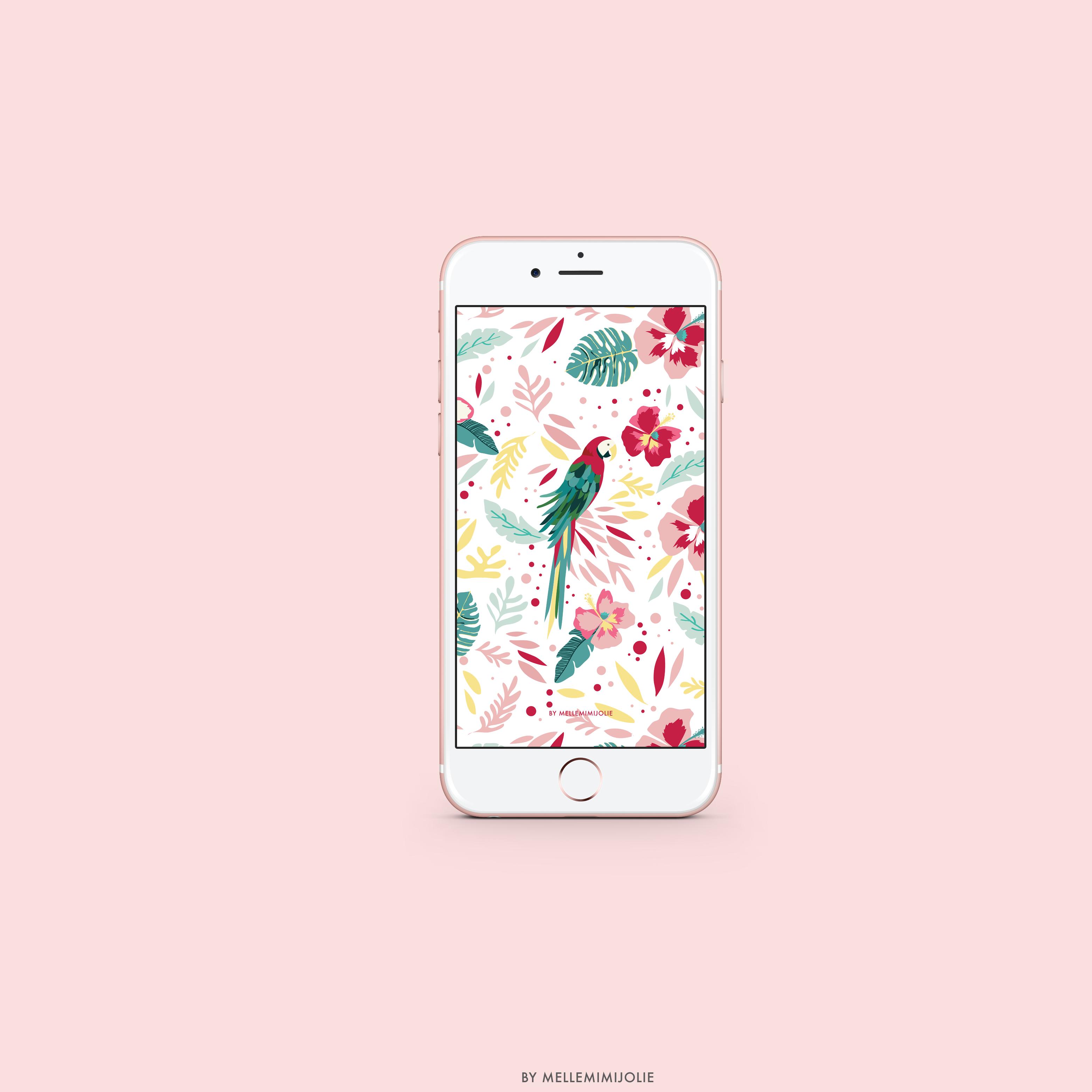 mellemimijolie-wallpaper-perroquet
