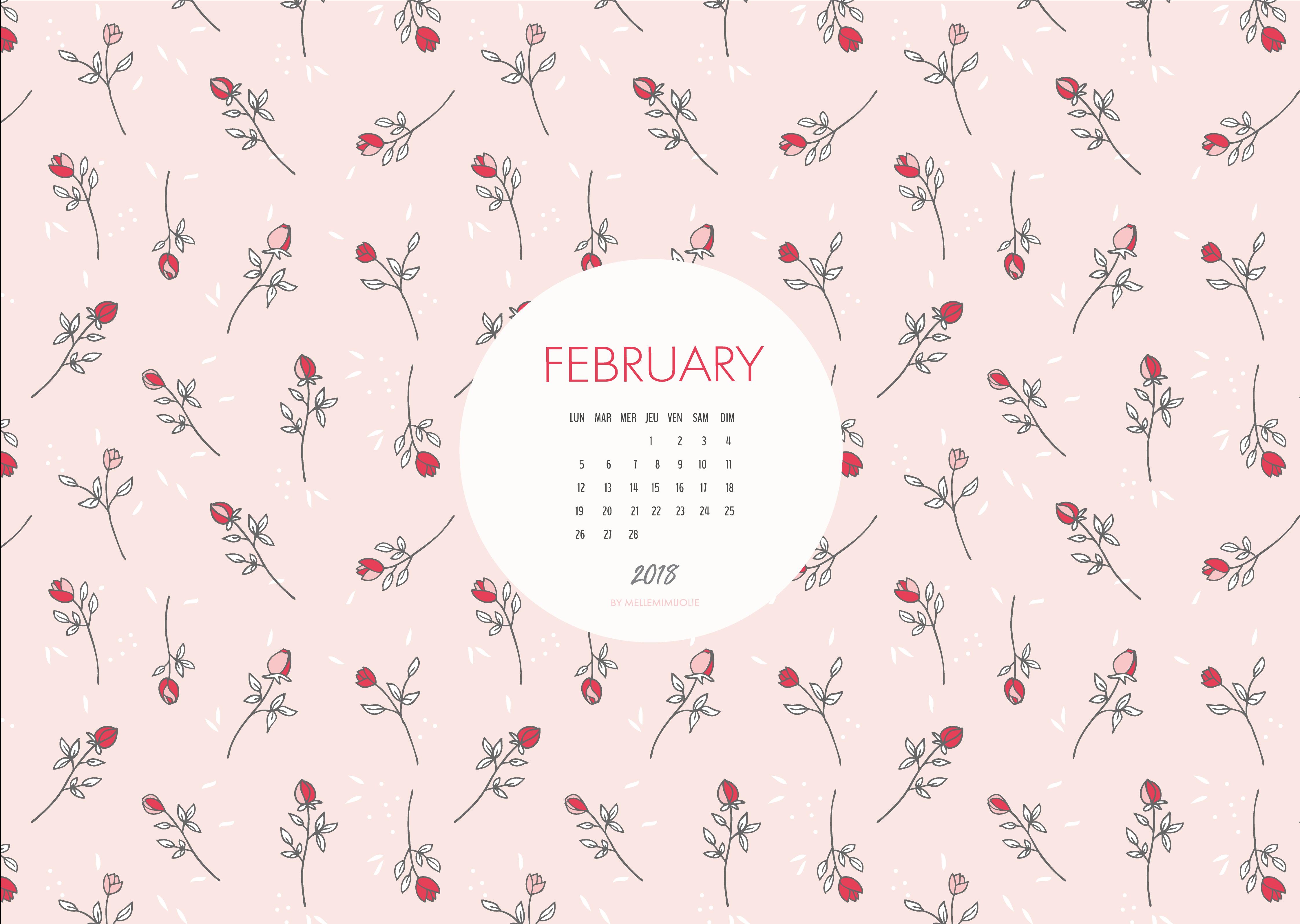 fevrier-2018-mellemimijolie
