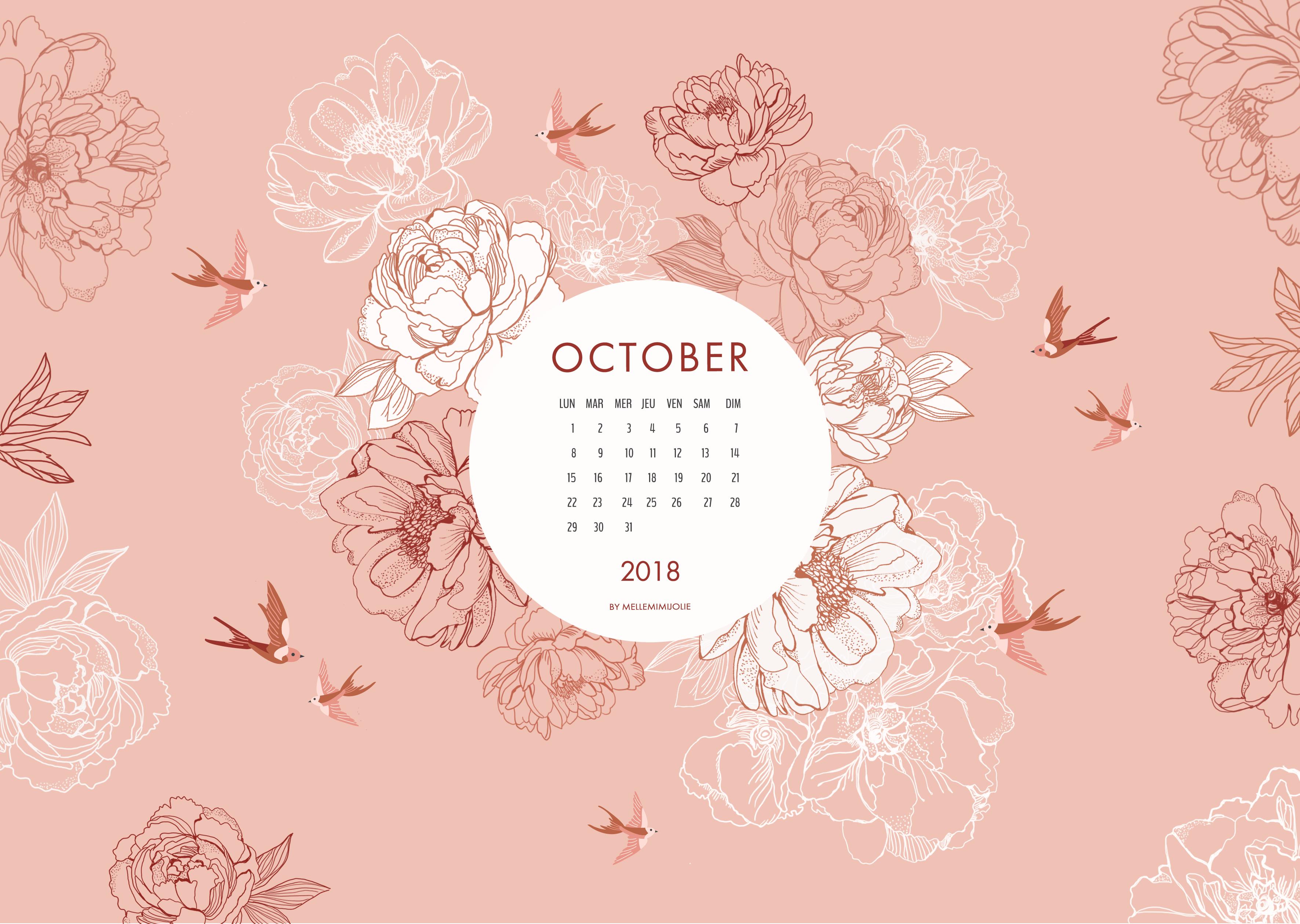 peonie-octobre2018-mimijolie